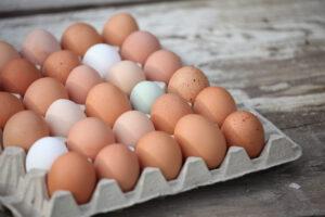Eier vom Hof